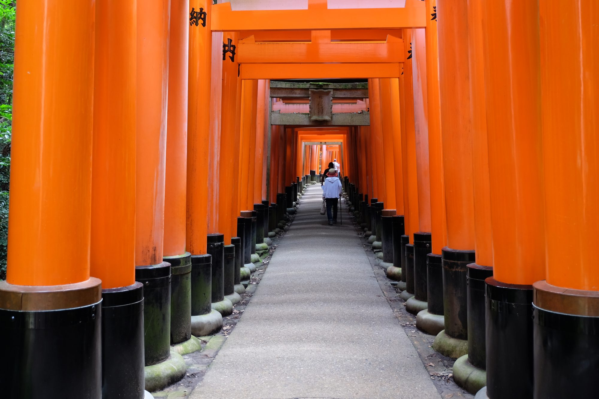Kyoto, Japan – Where to Go, Eat, and Drink!